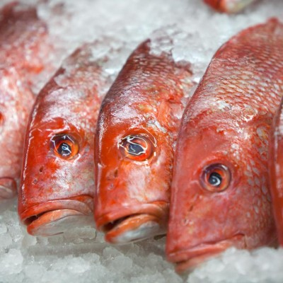west side market, fish
